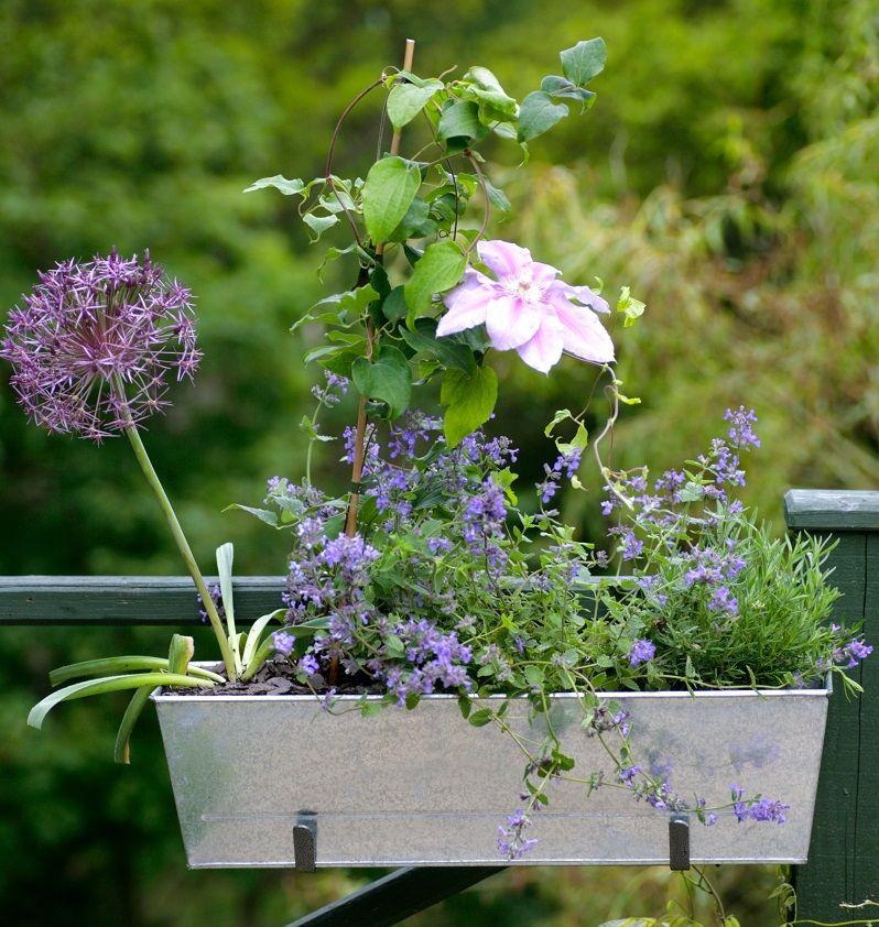Billige plantekummer til din have